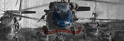 iCanvas Flags Army Blackhawk-Helicopter Graphic Art on Wrapped Canvas; 12'' H x 36'' W x 1.5'' D