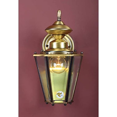 Volume Lighting 1-Light Outdoor Wall Lantern