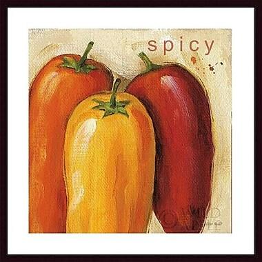 Printfinders 'Spicy' by Lisa Audit Framed Graphic Art