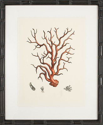 Mirror Image Home Coral I Framed Graphic Art