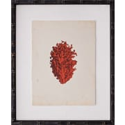 Mirror Image Home Mini Coral IV Framed Graphic Art
