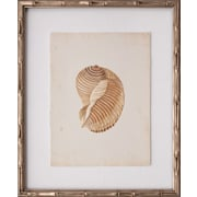 Mirror Image Home Mini Martini Shell I Framed Graphic Art