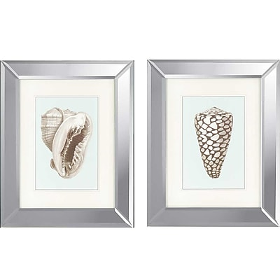 Paragon Shells II by Redoute 2 Piece Framed Graphic Art Set