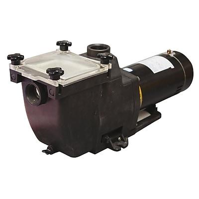 Blue Wave TidalWave™ 1 HP Replacement Pump For I/G Pools, Black