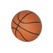 "Hathaway™ 7"" Mini Basketball, Orange"