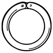 """FFR Merchandising® 5/8"""" Round Ring, White"""