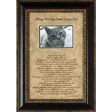 Artistic Reflections Things We Can Learn From a Cat Photo Frame