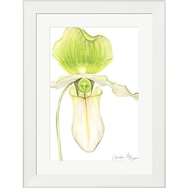 Evive Designs Orchid Beauty IV by Jennifer Goldberger Framed Painting Print