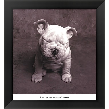 Evive Designs Baby Tears Framed Art