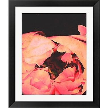 Evive Designs Coral Bohemian Peony by Evie Alessandria Framed Graphic Art