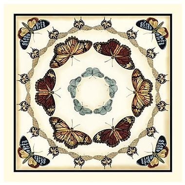 Evive Designs Butterfly Collector II by Chariklia Zarris Graphic Art