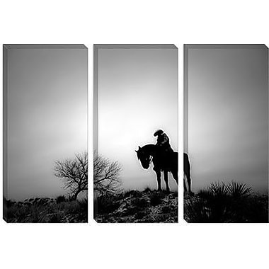 iCanvas ''Silence'' by Dan Ballard Photographic Print on Wrapped Canvas; 40'' H x 60'' W x 1.5'' D
