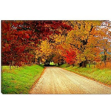 iCanvas 'Sparks Lane, TN' by J.D. McFarlan Photographic Print on Wrapped Canvas