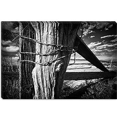 iCanvas 'Holding Strong' by Dan Ballard Photographic Print on Canvas; 12'' H x 18'' W x 1.5'' D