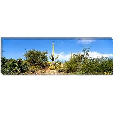 iCanvas Panoramic Tucson, Arizona Photographic Print on Canvas; 24'' H x 72'' W x 1.5'' D