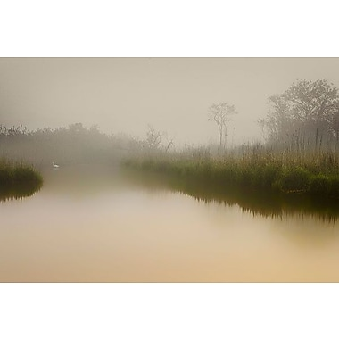 iCanvas ''South Meadows'' by Geoffrey Ansel Agrons Photographic Print on Wrapped Canvas
