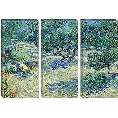 iCanvas 'Olive Orchard' by Vincent van Gogh Painting Print on Canvas; 40'' H x 60'' W x 1.5'' D