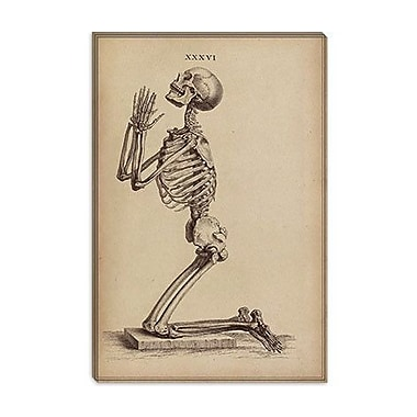 iCanvas 'A Praying Skeleton' by William Cheselden Graphic Art on Canvas; 40'' H x 26'' W x 1.5'' D