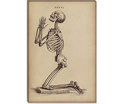 iCanvas 'A Praying Skeleton' by William Cheselden Graphic Art on Canvas; 26'' H x 18'' W x 0.75'' D