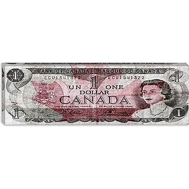iCanvas One Canadian Dollar 2 Panoramic Graphic Art on Canvas; 16'' H x 48'' W x 1.5'' D