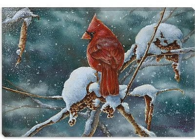iCanvas 'December Delight' by Wanda Mumm Painting Print on Canvas; 8'' H x 12'' W x 0.75'' D