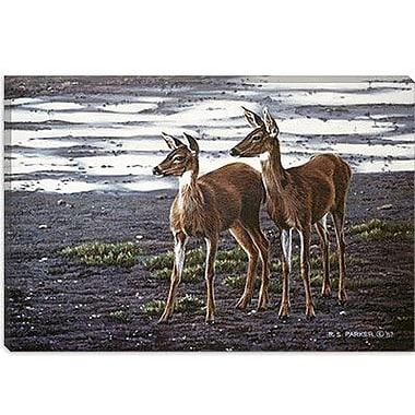 iCanvas 'On the Flats' by Ron Parker Painting Print on Canvas; 12'' H x 18'' W x 1.5'' D