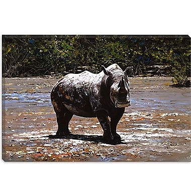 iCanvas 'White Rhino' by Pip McGarry Photographic Print on Canvas; 18'' H x 26'' W x 0.75'' D