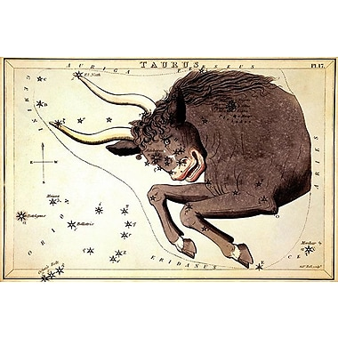 iCanvas ''Taurus Constellation ll'' by Sidney Hall Graphic Art on Wrapped Canvas