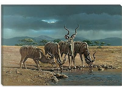 iCanvas 'Greater Kudus' by Harro Maass Painting Print on Canvas; 26'' H x 40'' W x 0.75'' D