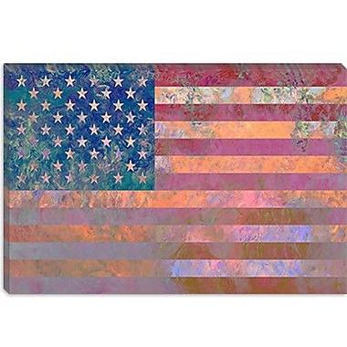 iCanvas Flags U.S.A. Grunge Graphic Art on Canvas in Pink; 26'' H x 40'' W x 0.75'' D