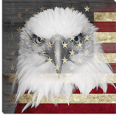 iCanvas Bald American Eagle Graphic Art on Wrapped Canvas in Red; 18'' H x 18'' W x 0.75'' D