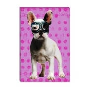 iCanvas Bulldog by Luz Graphics Graphic Art on Canvas in Pink; 26'' H x 18'' W x 0.75'' D