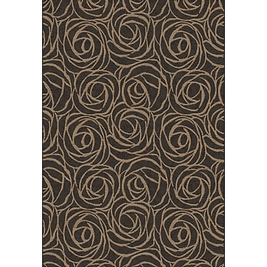 Dynamic Rugs Eclipse Black/Brown Floral Area Rug