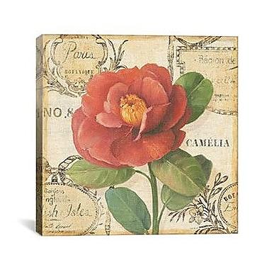 iCanvas 'Botanique II' by Lisa Audit Graphic Art on Canvas; 12'' H x 12'' W x 0.75'' D