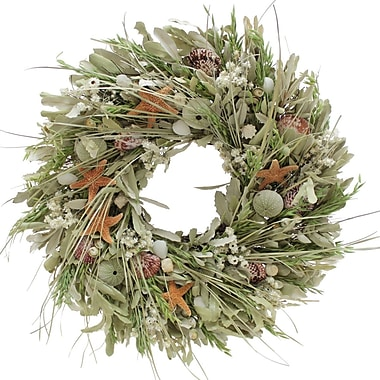 The Christmas Tree Company Seashell and Dried Floral Wreath 22