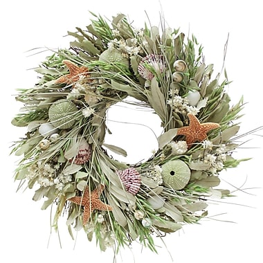 The Christmas Tree Company Seashell & Dried Floral Wreath 16