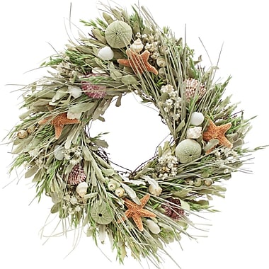 The Christmas Tree Company Seashell and Dried Floral Square Wreath 17