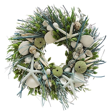 The Christmas Tree Company Seashell and Dried Floral Wreath 16