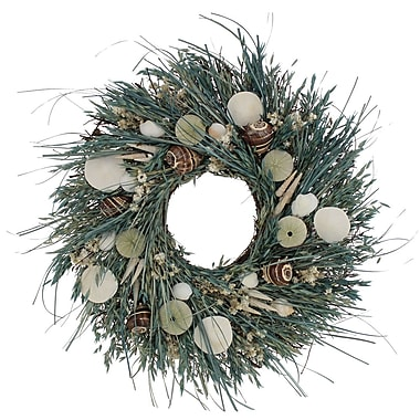 The Christmas Tree Company Waves and Water Seashell and Dried Floral Wreath 22