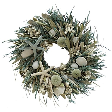 The Christmas Tree Company We Swim Seashell & Dried Floral Wreath 16