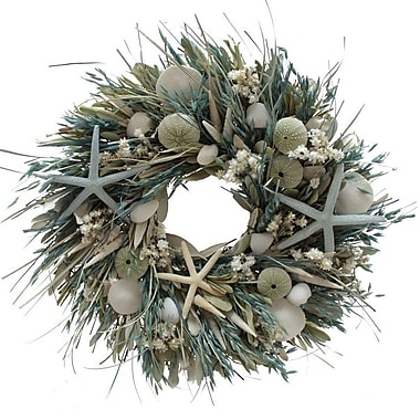 The Christmas Tree Company We Swim Seashell and Dried Floral Wreath 18