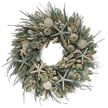 The Christmas Tree Company We Swim Seashell and Dried Floral Wreath 22