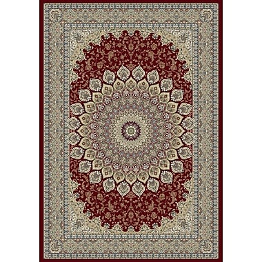 Dynamic Rugs Ancient Garden Oriental Red Area Rug; Rectangle 5'3'' x 7'7''