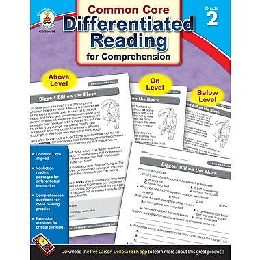 Carson-Dellosa Differentiated Reading for Comprehension Resource Book, Grade 2 (104614)