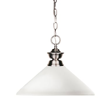 Z-Lite Shark (100701BN-AMO14) 1 Light Pendant, 14
