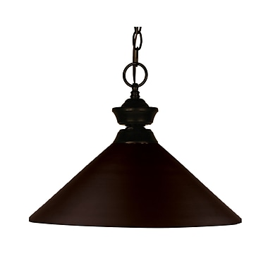 Z-Lite Shooter (100701BRZ-MBRZ) 1 Light Pendant, 14