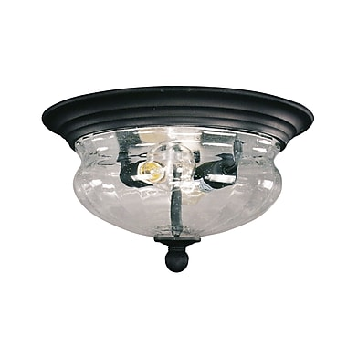 Z-Lite (509F-BK) Outdoor Flush Mount Light, 13.5