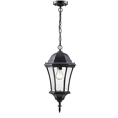 Z-Lite Wakefield (522CHM-BK) Outdoor Chain Light, 9.5