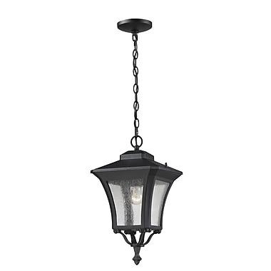 Z-Lite Waterdown (535CHM-BK) Outdoor Chain Light, 10.13