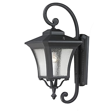 Z-Lite Waterdown (535M-BK) Outdoor Wall Light, 12.75